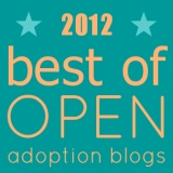 Best of Open Adoption Blogs 2012