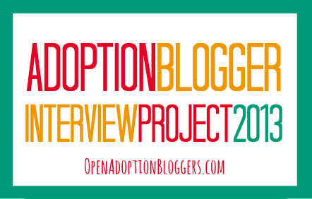 2013 Adoption Blogger Interview Project