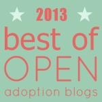Best of Open Adoption Blogs 2013